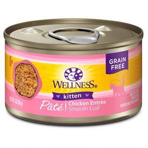 Wellness Complete Health Natural Grain Free